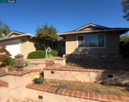 1737 Endriss Dr, Martinez image