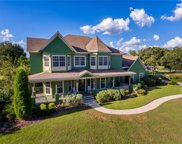 10548 Broadland Pass, Thonotosassa image