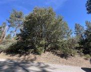 Deer Foot Lane, Idyllwild image