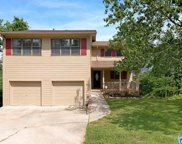 419 Shadeswood Dr, Hoover image