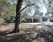1445 Bowman Street, Clermont image