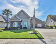 215 Tall Palms Way, Little River image
