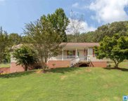 675 Copper Springs Rd, Odenville image
