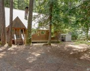142 Silver Springs-USFS, Greenwater image