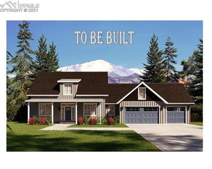 11495 Bison Meadows Court, Colorado Springs