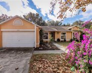 11513 Almo Court, Clermont image