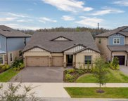 18717 Birchwood Groves Drive, Lutz image
