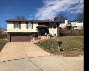 2715 Windford, St Louis image