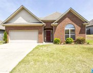 687 Waterford Ln, Calera image
