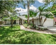 2948 Longbrooke Way, Clearwater image