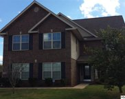 712 Moon Creek Circle, Madison image
