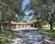 830 3rd St Nw, Naples image