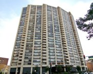 3930 North Pine Grove Avenue Unit 1615, Chicago image