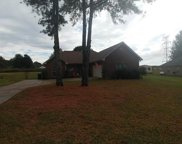 205 Seddon Farms Dr, Pell City image