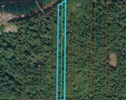 3 Acres State Route 106, Belfair image