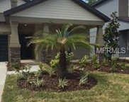 14212 Blue Dasher Drive, Riverview image