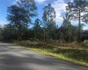 Undetermined, Dunnellon image