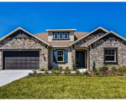 13318 Fawn Lily Drive, Riverview image