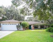 3906 Applegate Circle, Brandon image
