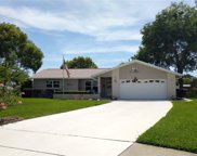 134 Stafford Drive, Palm Harbor image