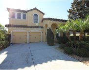 20309 Chestnut Grove Drive, Tampa image