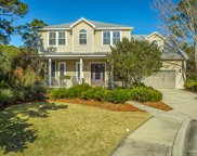 171 White Pelican Ct, Carrabelle image