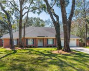 1344 WILLOW OAKS DR S, Jacksonville Beach image