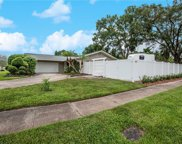 13726 Country Court Drive, Tampa image