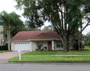 9701 Pleasant Run Way, Tampa image