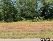Tract 6 Moser Ln, Whitehouse image