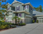 11917 Meridian Point Drive, Tampa image