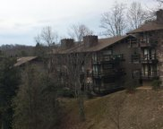 1081 Cove Road Rd Unit 633, Sevierville image