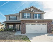 14109 Highland Meadow, Charlotte image