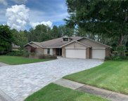 18234 Clear Lake Drive, Lutz image