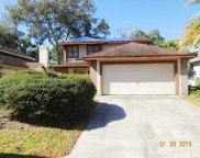 2246 Springflower Drive, Clearwater image