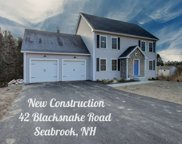 42 Blacksnake Road, Seabrook image