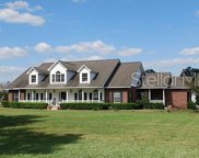 13210 Lewis Raulerson Drive, Dover image