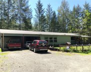 981 Cannon Rd, Packwood image