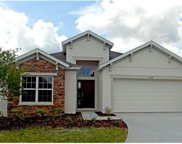 6251 Doe Path Court, Wesley Chapel image
