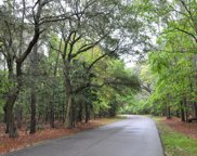 34 Wild Turkey Way, Johns Island image