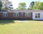 1117 Cox Ferry Rd, Conway image