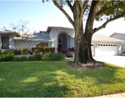 2682 Meadow Wood Drive, Clearwater image