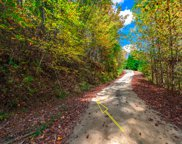 LOT22 Dancing Leaves, Blue Ridge image