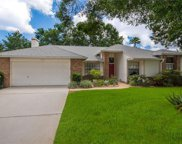 1725 Singing Palm Drive, Apopka image