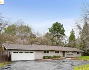 1745 Green Valley Rd, Danville image