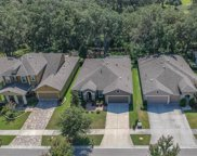 16007 Courtside View Drive, Lithia image