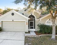 29719 Birds Eye Drive, Wesley Chapel image