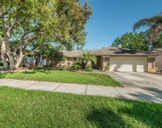 3118 Blue Heron Street, Safety Harbor image