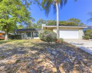 805 Highview Drive, Palm Harbor image