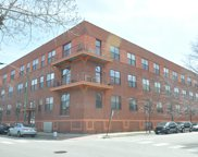 1061 West 16Th Street Unit 206, Chicago image